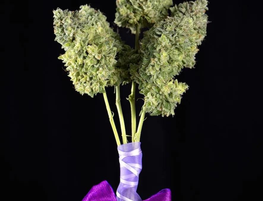 How to Introduce Your Mom to Marijuana