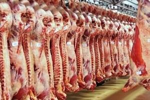 نقيب عام الجزارين : ارتفاع أسعار اللحوم إلى ١٣٠ جنيها