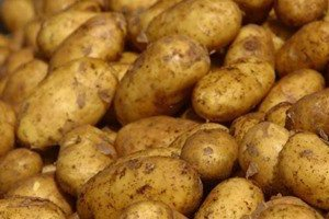 روسيا تخفف الحظر على واردات البطاطس المصرية