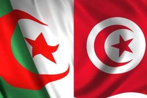 بث مباشر لمباراة تونس و الجزائر و موعد المباراة ضمن مباريات أمم إفريقيا اليوم الخميس 19-1-2017
