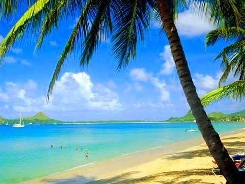 Reduit beach, another amazing beach in St Lucia