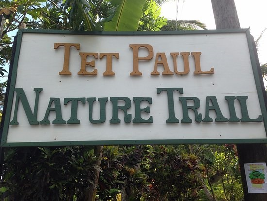 Tet Paul