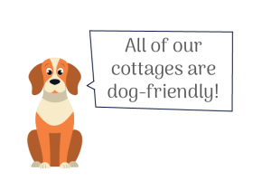 All of our luxury Northumberland self catering cottages are dog friendly