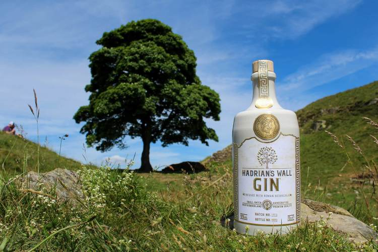 Hadrians Gin local Northumberland craft at Sycamore Gap