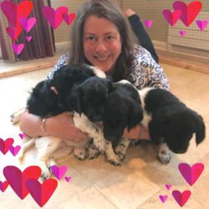 Laura & pups