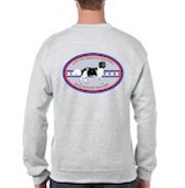 grey back sweatshirt