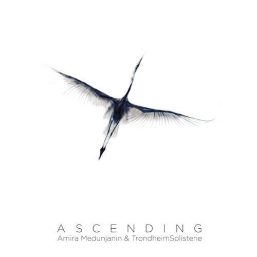 amira-medunjanin-staccatofy-cd