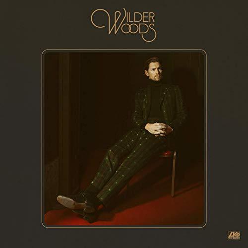 WILDER-WOODS2-staccatofy-cd