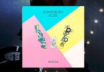wiese-cd-staccatofy-fe-2