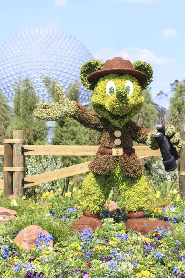 Mickey Topiary at Epcot Flower & Garden Festival