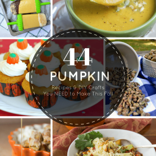 A collection of 44 pumpkin recipes + DIY crafts that everyone will love! You're going to want to make them all this fall!