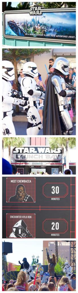 Make sure you check out all the new shows and additions of Star Wars at Hollywood Studios! Grab a roasted vegetable sandwich at Starring Rolls Cafe for lunch!