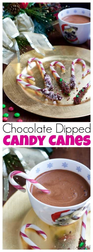 Chocolate dipped candy canes are super simple to make but will turn any hot chocolate or coffee you might be enjoying this Christmas into a holiday treat!