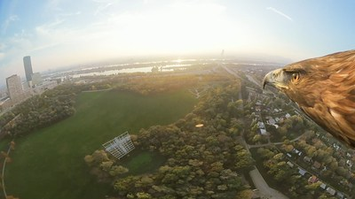 Get an eagle eye's view of Vienna – literally