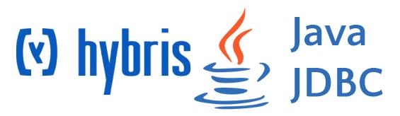 native SQL query in Hybris