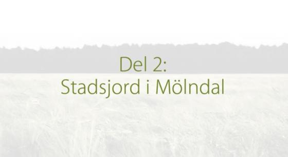 DEL2STADSJORD