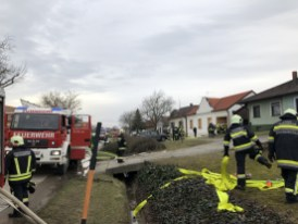 20200301_BE_Zurndorf_004