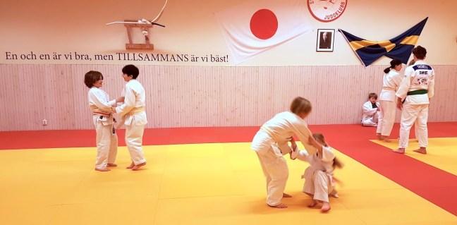 Staffanstorps judoklubb F4 2018