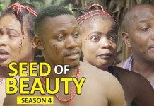 Season Film SEED OF BEAUTY 4