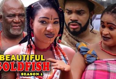 beautiful goldfish season 1 noll