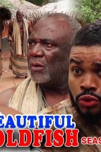 BEAUTIFUL GOLDFISH SEASON 3 – Nollywood Movie 2019