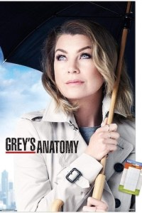 Greys Anatomy Season 17 Episode 2 (S17 E02) Subtitles
