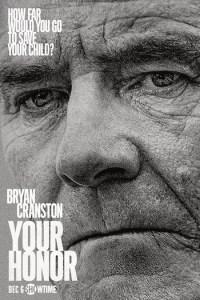 Your Honor Season 1 Episode 4 (S01 E04) TV Show