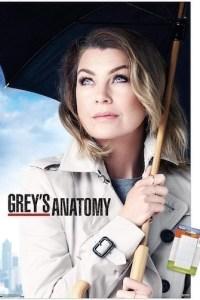 Greys Anatomy Season 17 Episode 8 (S17E08) Subtitles