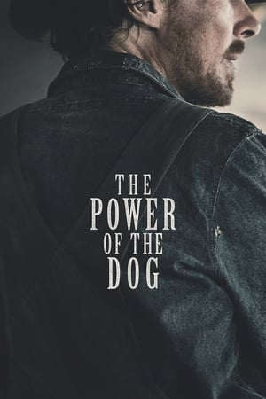 The Power of the Dog (2021)