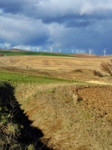 The Palouse region of Washington is one of my favorite places