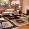 carpet squares for my home floor_project manager Karen Van Nort_Staged to Sell