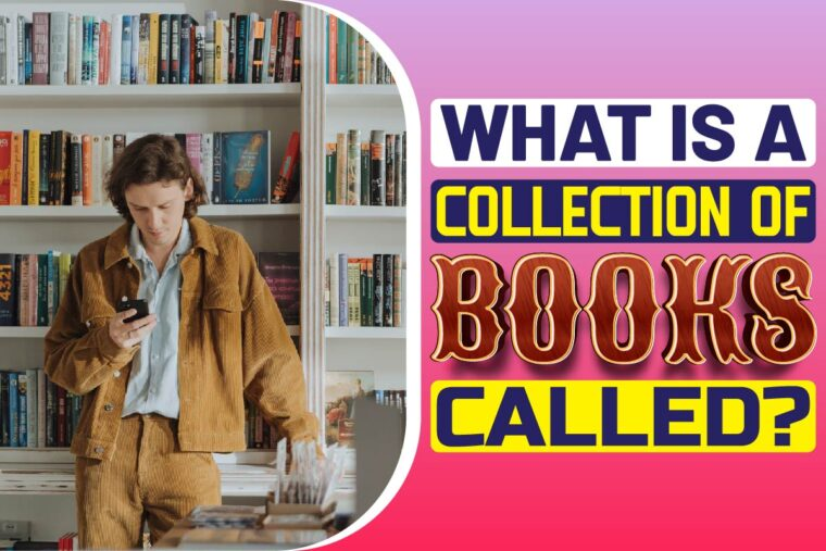 what-is-a-collection-of-books-called What Is A Collection Of Books Called?