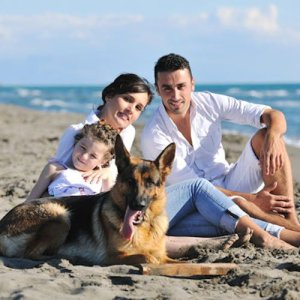 A man, woman, child, and large dog sit on a sunny beach for a family portrait.