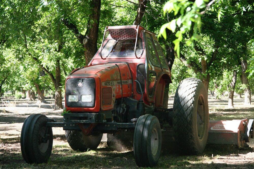 Ground prep by pecan farmer
