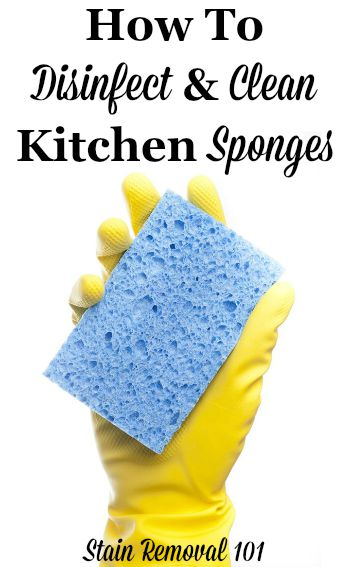 how to disinfect and clean a sponge