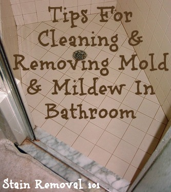 cleaning and removing mold & mildew in bathroom