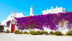 10 Best Masseria Hotels in Puglia, Italy