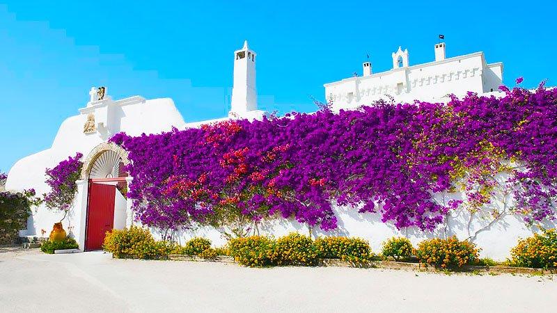 10 Best Masseria Hotels in Puglia, Italy