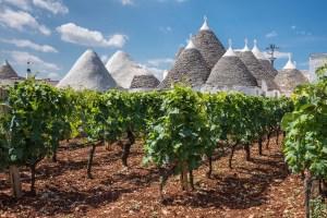 It's Time to Revisit Primitivo, Puglia's Premiere Grape