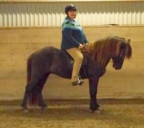 Ajax från Backome f. 2011. Mörkbrun valack e. Seifru frá Kvistum u. Assa frá Ketilsstödum. Ajax är en mycket vacker och tillgiven häst med underbara gångarter.
