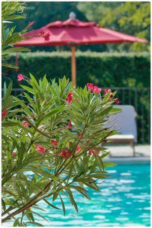 _DSC2152-1_photographe hotel chambre d hote Avignon Provence