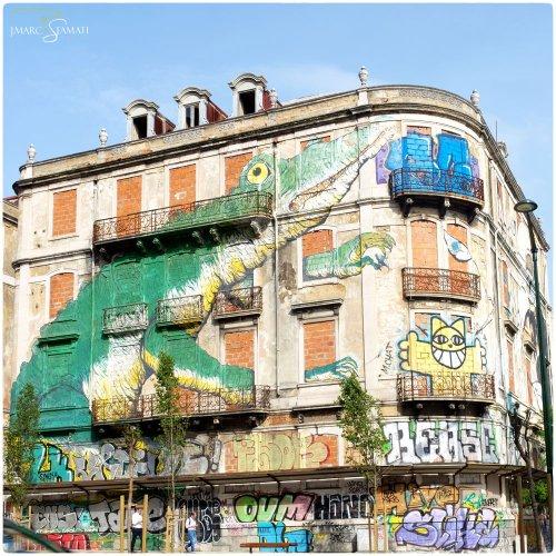 DSCF4647_jean marc Stamati photographe Avignon