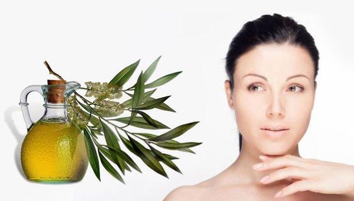 Benefits Of Tea Tree Oil For Skin