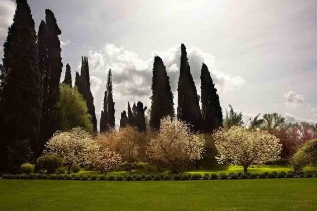 Giardino di Ninfa con cipressi e alberi in fiore di giorno