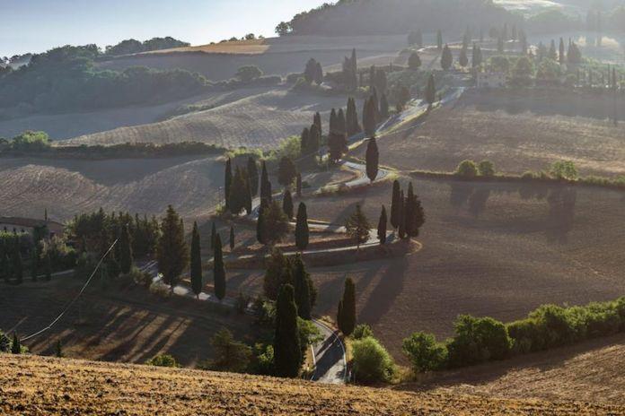 Viaggi on the road, la strada che porta al borgo medievale che si chiama Monticchiello