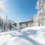 Ferrovia Retica, un passaggio del treno in un paesaggio pieno di neve