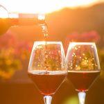 Prodotti dealcolizzati, una proposta UE darebbe la possibilità di commercializzare vino dealcolato