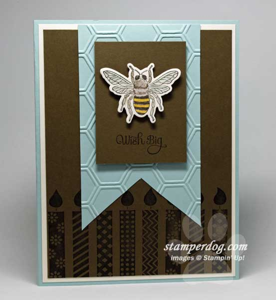 Masculine Birthday Card Stampin Up Demonstrator Ann M