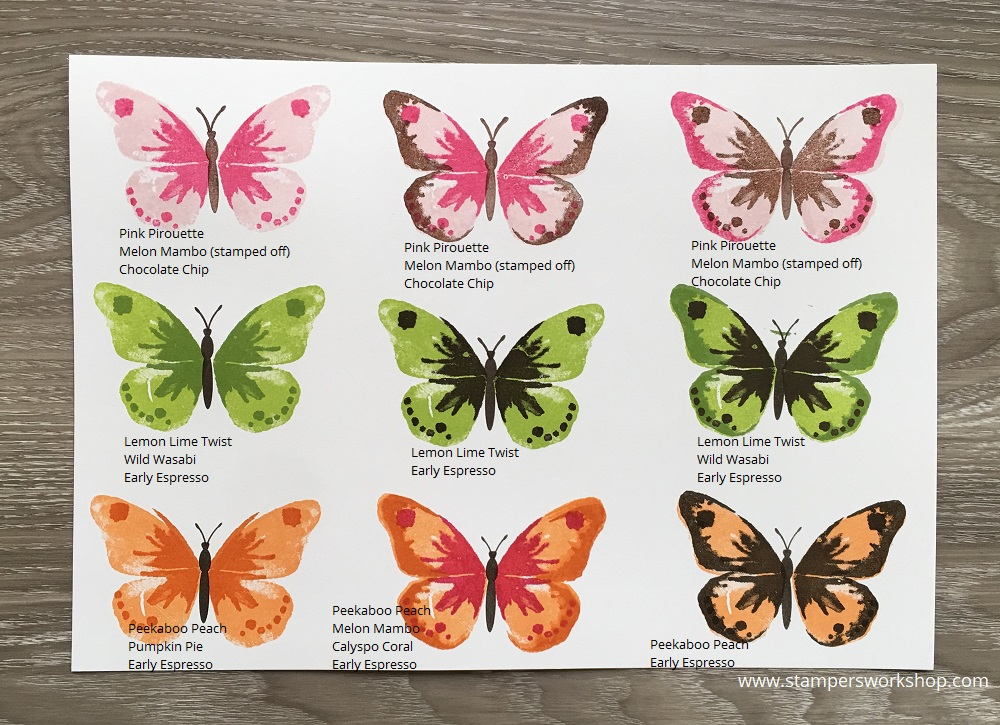 Watercolour Wings Colour Combinations