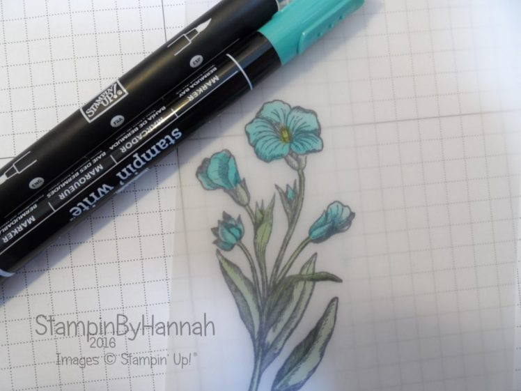 Stampin' Up! UK Blender Pens Stampin' Write Makers Vellum Colouring
